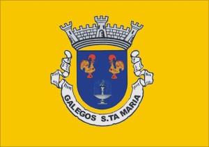 Bandeira de Galegos S.ta Maria